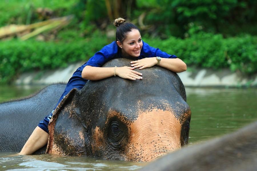 3 days elephant mahout training