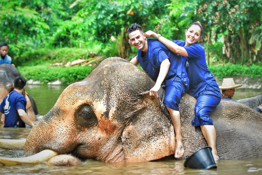 2 days elephant life adventure